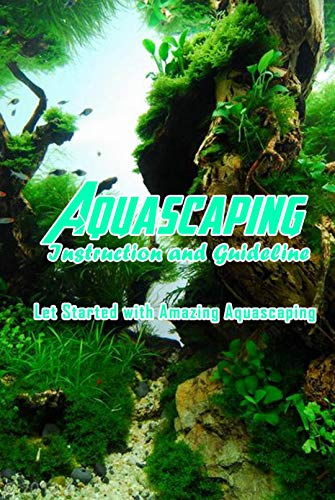 Aquascaping Instruction and Guideline: Let Started with Amazing Aquascaping: Create Amazing Aquascaping (English Edition)