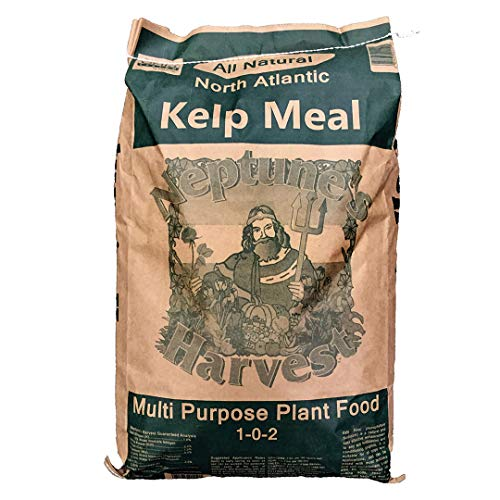 Neptune's Harvest Kelp Meal Multi-Purpose Plant Food 1-0-2, 50 lb