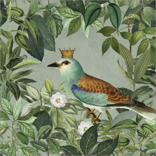Posterlounge Acrylglasbild 60 x 60 cm: König des Dschungels von Andrea Haase - Wandbild, Acryl Glasbild, Druck auf Acryl Glas Bild