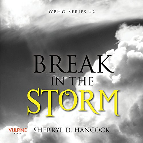 Break in the Storm audiobook cover art