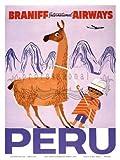 None Brand Braniff Airways Peru Blechschild Wandschilder