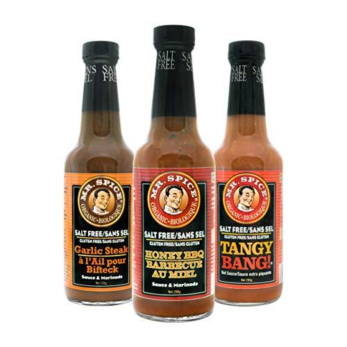 Mr. Spice Organic Honey BBQ Sauce - Salt-Free Barbecue Sauce - Fat-Free Marinade - Gluten-Free - Vegetarian - Low Calorie