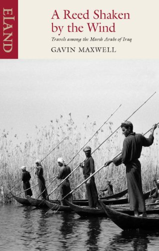 A Reed Shaken By The Wind: Travels Among The Marsh Arabs Of Iraqの詳細を見る