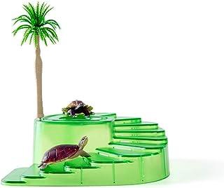 Amazon.es: rampa para tortugas