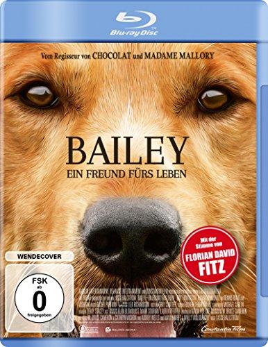 Bailey - Ein Freund fürs Leben [Blu-ray]