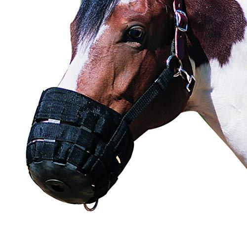 Sunwin - Museruola da pascolo per cavalli, regolabile
