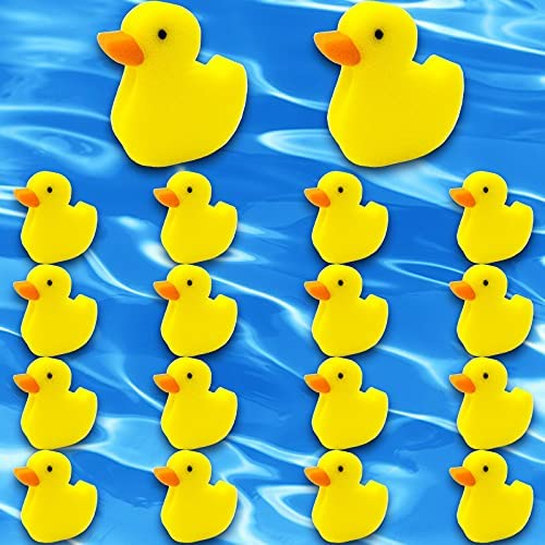 Top 10 Best hot tub duck cleaner Reviews