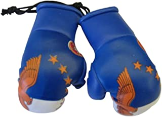Acores Mini Small Boxing Gloves