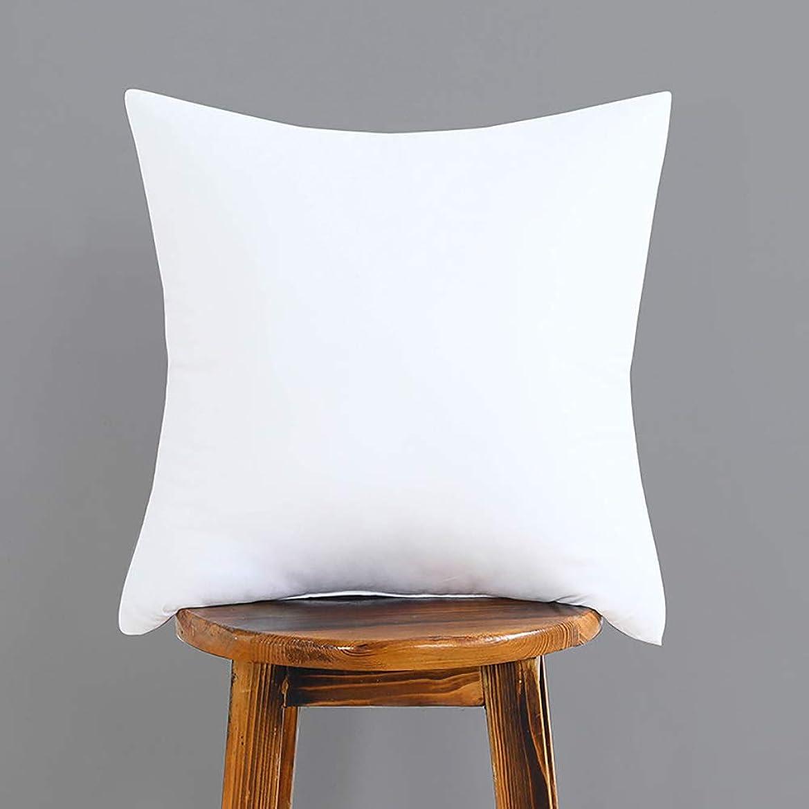 ナンセンス貫通する癒すWvvTee ヌードクッション クッション中材 立体7D綿 ソファ ベッド 背当てタイプ ホワイト 洗える 35x35CM 300G