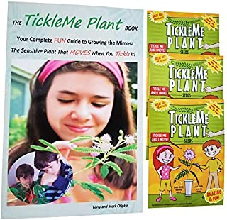 Grow Your Own TickleMe Plant Fairy Garden, Leaves Close When Tickled. Pink Flowers, 3 Packets of TickleMe Plant Seeds, Free TickleMe Plant Care Book-Fun Plant Activities for Children-Fun Nature Gift