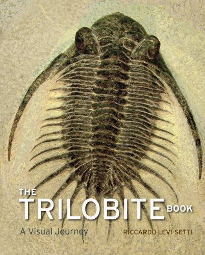 Trilobite Book: A Visual Journey