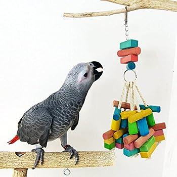 Daedalus Jouet pour oiseaux en bois coloré pour perroquet, ara, perruche, perruche, perruche, cacatoès, cacatoès, cacatoès, cacatoès, cacatoès amazonien