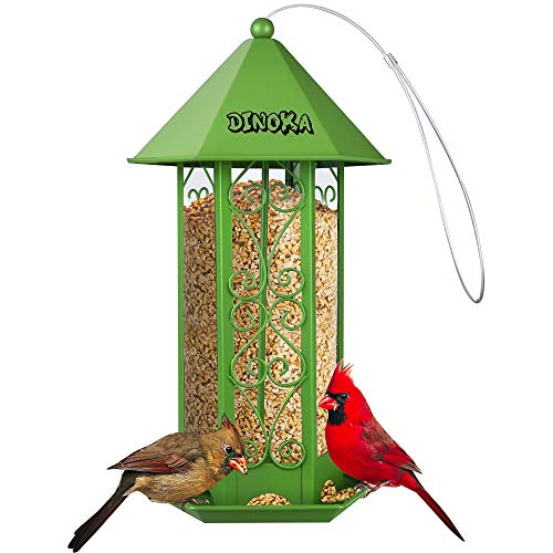 DIINOKA Bird Feeder, Outdoor Squirrel Hanging Platform Large Tube Transparent Balcony Perky pet Bird Feeder kit with Pole Lanyard Hanger Suit for Oriole Thistle Squirrel