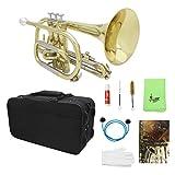magideal strumento musicale professionale trombe in ottone bb flat con guanti custodia spazzola