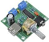 PM2038 2X5W Stereo Audio Amplifier Bord 5V USB Power Supply Adjustable Volume