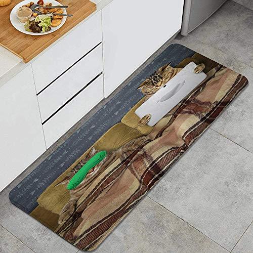 NINEHASA Alfombra de Cocina,Dos Gatos están descansando en la Cama,Lavable Antideslizante Alfombrilla de Goma Alfombra de Baño Alfombrillas Cocina
