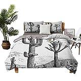 Dragon Vines - Juego de 4 fundas de cama de lujo para todas las estaciones, estilo mexicano romántico, flores tiernas y estéril, vegetación natural, coral verde, lavanda, habitación de doble cama