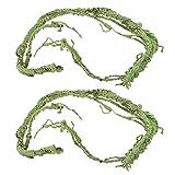 Gazechimp 2pcs Flexible Una Rama Vid Ratán Reptil Geckos 110cm para Terrarios Bricolaje