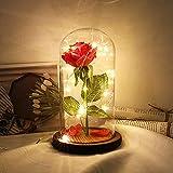 Rosa Eterna, Rosa Real Preservada En La Cúpula de Vidrio En la Base de Madera Ideal para el Día De San Valentín/Día de La Madre/Aniversario/Boda/Regalo con Control Remoto(Brown)
