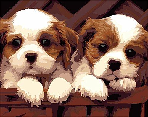 Pintura por los kits de los números, pinturas de los animales para los adultos niños mayores, pintura al óleo de DIY en lona con el marco de madera (Perro)