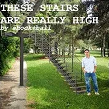 these stairs are really high