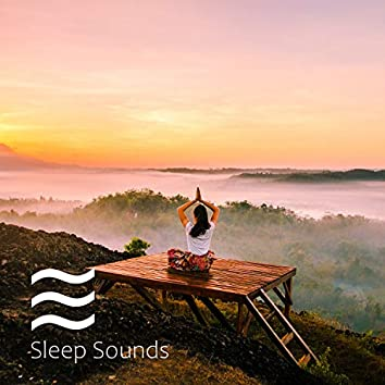 Soothing Shushers Noises Natural for Sleep