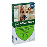 ADVANTAGE 400 Lösung Pipetten f.Hunde ab 25 kg 4 St Lösung