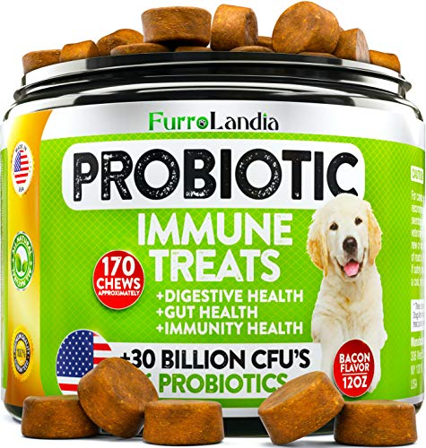 Probiotics for Dogs - Advanced Dog Probiotics Chews with 30 Billion CFUs + Digestive Enzymes - Relieves Dog Diarrhea, Constipation, Improves Digestion, Allergy, Hot Spots, Immunity - Made in USA