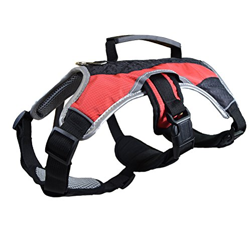 Downtown Pet Supply Dog Walking Lifting Carry Harness, Support Mesh Padded Vest, Accessory, Collar, Lightweight, No More Pulling, Tugging or Choking, for Puppies, Small Dogs (Red, X-Large)