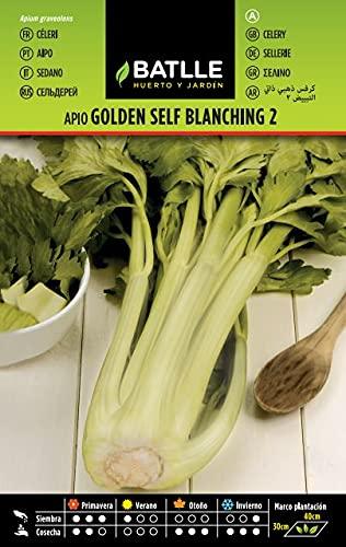 Semillas Hortícolas - Apio Golden Self Blanching 2 - Batlle