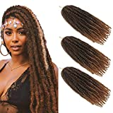 Extensiones de Pelo Rizado de Fibra Sintética Ombre Paquete de 3 Afro Ondulado Rizado Trenzado Crochet Marley (18 pulgadas, 1B/27#)
