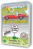 Como se tornar um Asno Volante: em 19 lições erradas (Portuguese Edition)