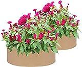 SDKFJ Bolsas de Cultivo Cama de plantación elevada de Tela de 50 galones, Paquete de 2 Bolsas de Cultivo de Plantas, Bolsa de Cultivo Redonda para macetas, contenedor de Plantas para Plantas vegetale