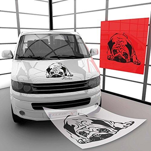 Klebe-X Pegatina para Perro con Nombre Personalizado de cómic A00632, 13 Rosa Brillante, 48 cm (B) x 35 cm (H)