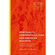 Spirituality, Corporate Culture, and American Business: The Neoliberal Ethic and the Spirit of Global Capital (Critiquing Religion: Discourse, Culture, Power)