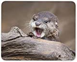 N/A Baby Otter Mouse Mat Pad - Wild Animal Nature Cute Funny Computer Gift #16433