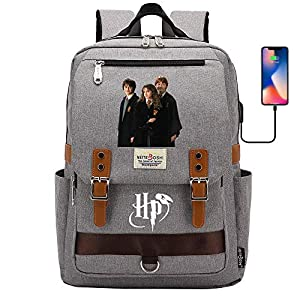 DDDWWW Mochilas Escolares Hogwarts, Bolsas de la Escuela Mágica para Buenos Amigos, Mochilas Multifuncionales y Bolsas de Almuerzo Ligeras Bolsa para computadora con Puerto de Carga USB Medio Gris