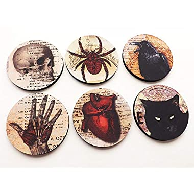 Halloween Home Decor Coasters 3.5 inch round neoprene skull anatomical heart black cat raven goth