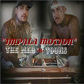 Impala Motion