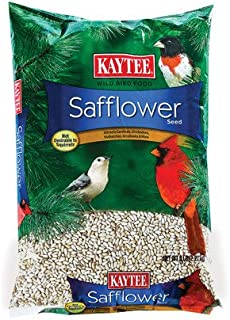 Kaytee Products TV208956 Safflower Seed, 10 lb