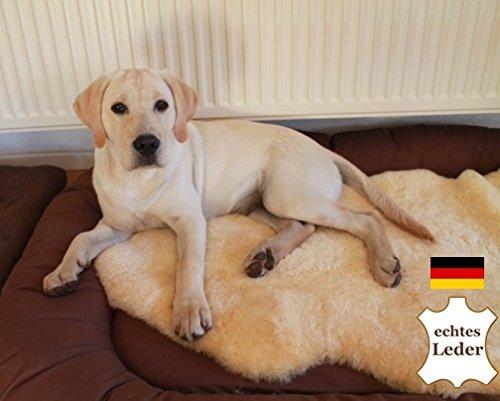 Merino-Lammfell für Hunde und Katzen. Strapazierfähiges Leder, Medizinische Gerbung, 30°C waschbar. Echtes Leder. Geruchsarm, schadstoffarm. Deutsches Qualitätsprodukt. Länge ca. 60cm