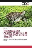 Morfología del Aparato Digestivo de la Trachemys scripta elegans: Aparato Digestivo de la Tortuga Orejas Rojas