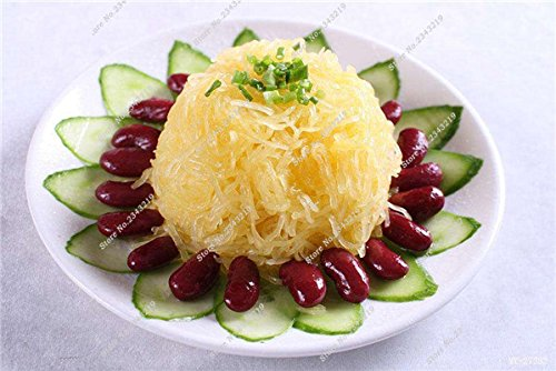 Graines de citrouille Cucurbita fil d'or fruits citrouille melon et légumes des semences meilleures ventes de l'extérieur, Bonsai 30 Plantes en pot Pcs 16