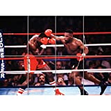 Doppelganger33 LTD Tyson Mike Boxing Bruno Huge Wand Kunst