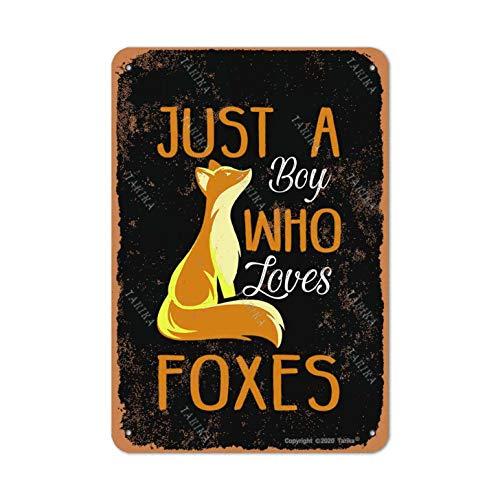 Letrero decorativo de lata con aspecto retro de Just A Boy Who Loves Foxes de 20 x 30 cm, para el hogar, cocina, baño, granja, jardín, divertido decoración de pared