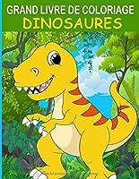 GRAND LIVRE DE COLORIAGE DINOSAURES: Livre de coloriage de dinosaure amusant pour enfants, garçons, filles et cadeau de détente pour adultes pour les ... à colorier livre de coloriage dinosaure