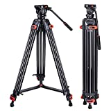 10 Best Tripod with Heads