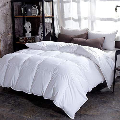 CHOU DAN Duvet Double Bed 10.5 Tog,goose down duvet warm thicken winter quilt blanket comforter-white_200X230 2000g (1pcs)