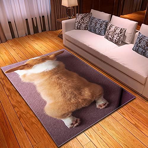 XuJinzisa Alfombra De Impresión 3D para Perros Y Mascotas, Alfombra Suave Antideslizante para Habitación De Niños, Sala De Estar, Dormitorio, Alfombra Decorativa para El Hogar, 80X150Cm H11680