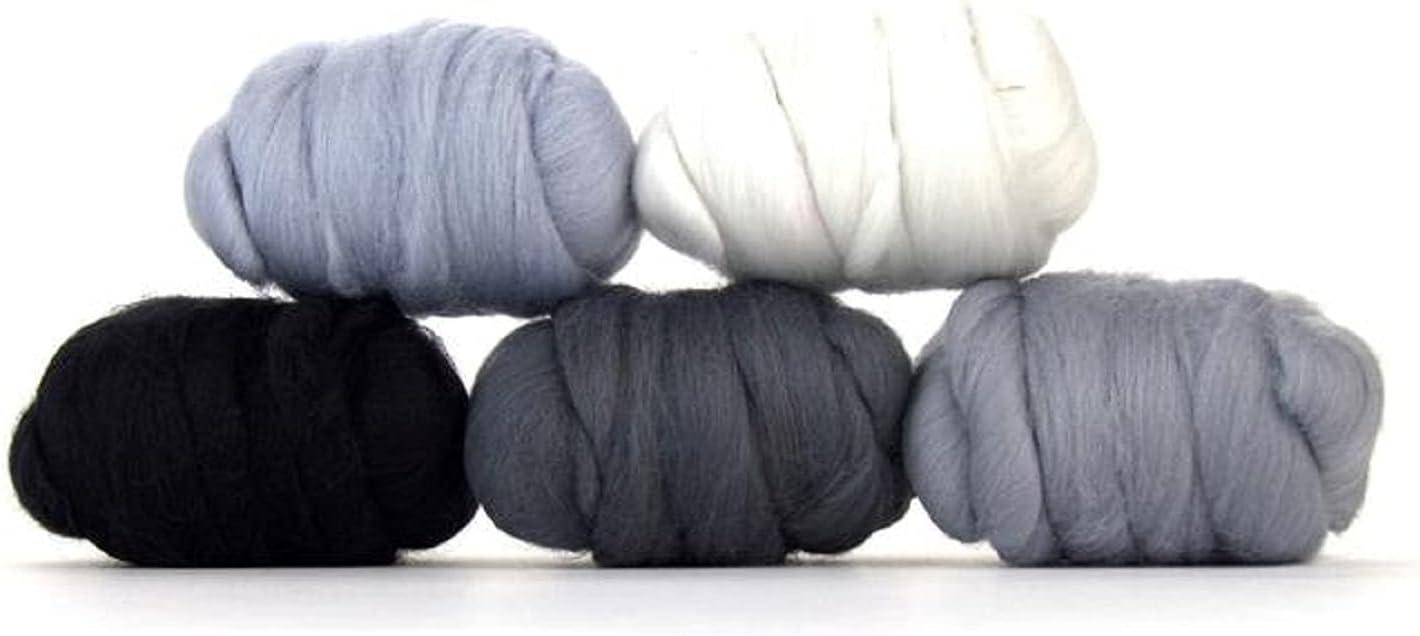 Revolution Fibers Mixed Merino Louisville-Jefferson County Mall Wool Woo Perfect Pack Fashion Variety